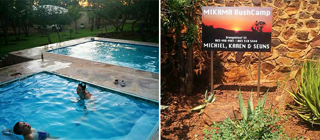 mikama bush camp, self catering accommodation, bela-bela, waterberg affordable getaway, rooms with communal kitchen, bush veld, small deer, game viewing